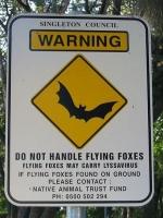 fruit-bats-virus-risk-sign-australia