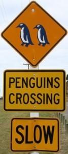 penguin-crossing-sign-nz