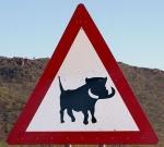 warthog-zone-africa