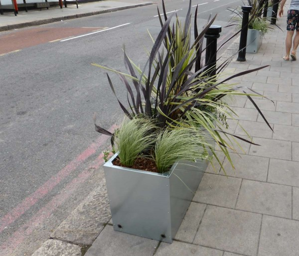planter box in Streatham, London